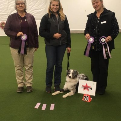 Thyme receiving her CARO Rally Novice Obedience Title.